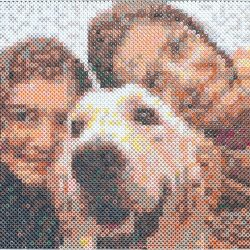 PhotoPearls mosaicos de fotos